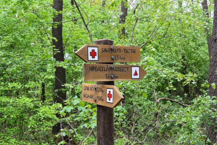 útjelző táblák az erdőben