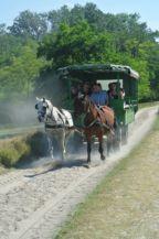 lovaskocsi a nemzeti parkban