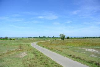 bicikliút a Zicklacke közelében