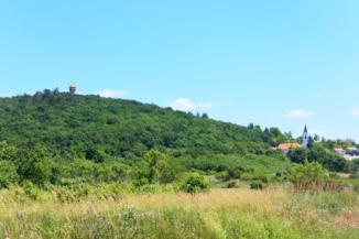 Somlyó-hegyi kilátó és az alsóörsi református templom