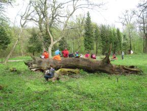 Gerecse 50: Pihenő a természetben (a Cartographia Kupa 2015 fotópályázatából)