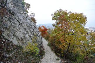 útban a Sas-hegy északi oldalára