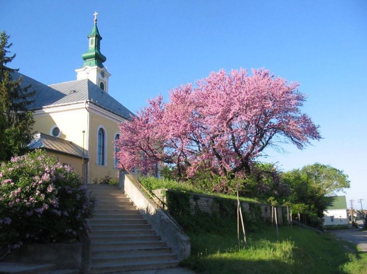Szent Joachim-templom