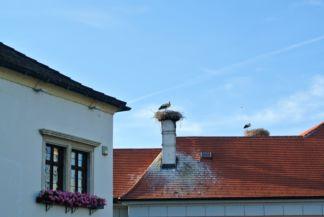 Ruszt, a gólyák városa