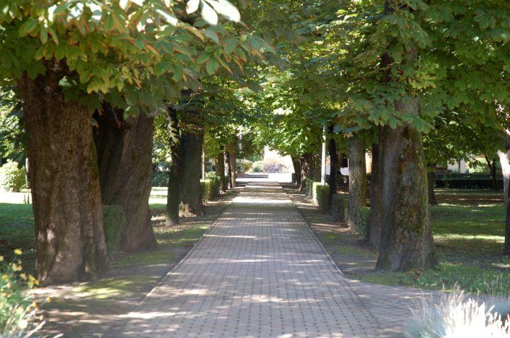 sétány a templomparkban