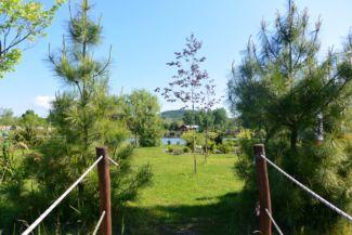 a Lóga-tó szigete