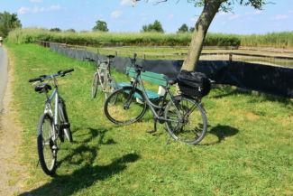 kerékpárok várják gazdájukat a mangalica telep mellett