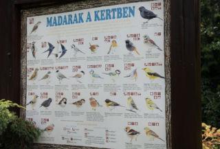 madármutató tábla a Budai Arborétumban
