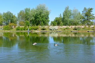 Lóga-tó