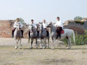 lipicai lovak Kórógy váránál Fotó: Zöld Eszék/Antunovac