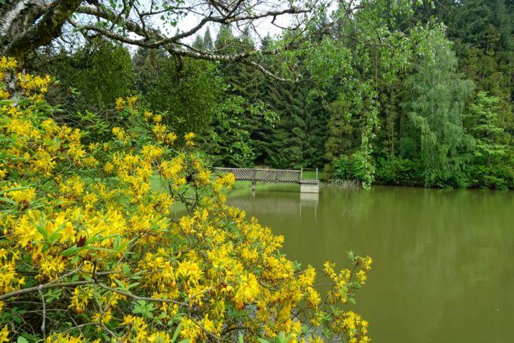 Budafai Arborétum