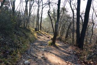 a piros jelzésen jutunk le a János-hegyről a Szépjuhászné felé a köves ösvényen