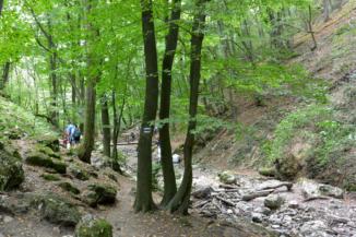 gyalogtúra a Dera-patak kiszáradt medre mentén