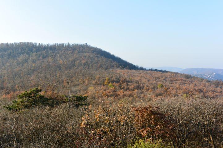 a Nagy-Hárs-hegy a Kis-hárs-hegyről