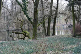 az arborétumban látható egyik kis tó
