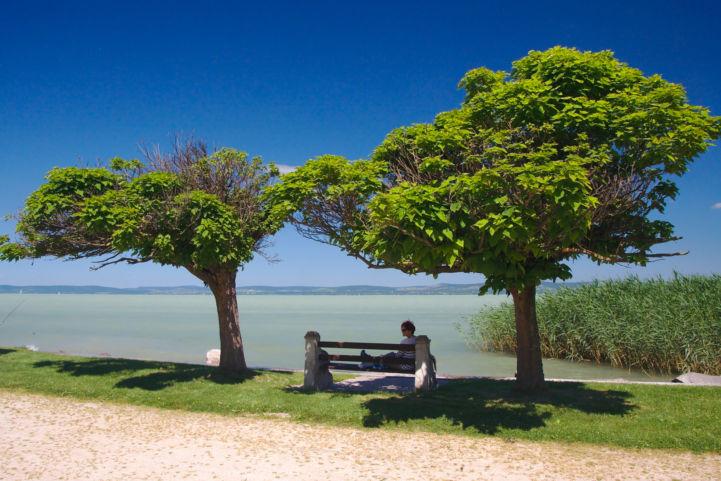 pihenés a fák árnyékában a Balaton partján