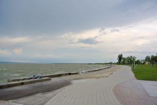 Fertő tó partján