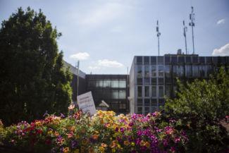 virágok a Budai Arborétum főépülete előtt