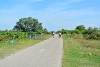 kerékpárút a Zicklacke közelében