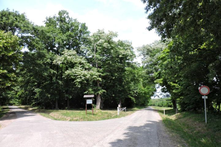 jobbra tartunk, az út mellett láthatjuk az erdőterületet jelölő sorompót