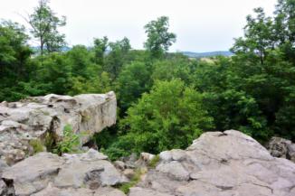 kilátás a szentbékkállai kőtenger egyik kövéről