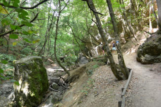 eltévedni nem tudunk a Dera-patak mentén