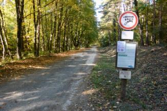figyelmeztető táblák az út mentén a Keszthelyi-hegységben