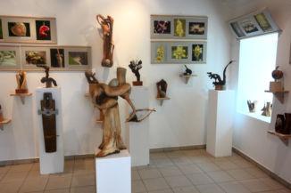 kiállítás a Folly Arborétum fogadóépületében