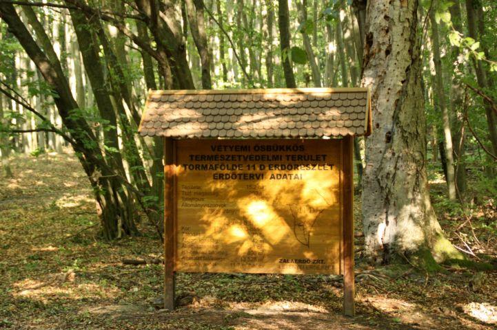 információs tábla a Vétyem erdőrezervátumban