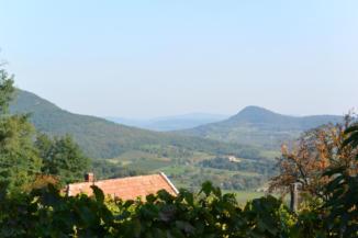 a Gulács látképe a Badacsony északi oldaláról