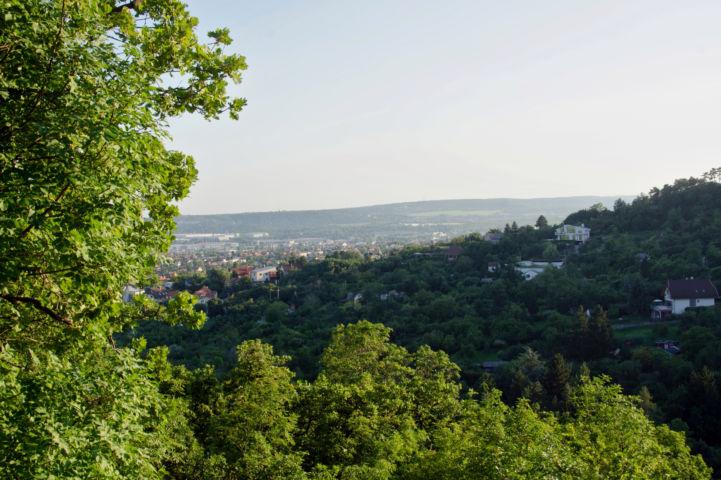 kilátás a Rupp-hegy oldalából