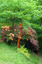 virágzó azáleák a Budafai Arborétumban