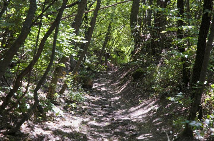 a Magasúti lejtőtől induló ösvény