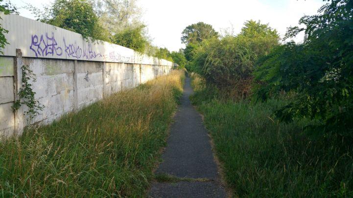 kicsit benőtt kerékpárút a Duna és egy fal között