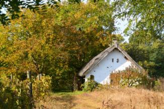 növényekkel körbevett ház Pálmajor és Somogyszentpál között