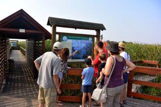 Tisza-tavi Vízi Sétány és Tanösvény - érkezés a tanösvény indulási pontjához
