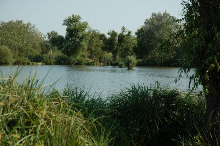 Kígyós-tó