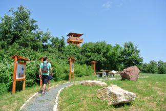Volcano Nature Trail and the Kossuth Lookout Tower