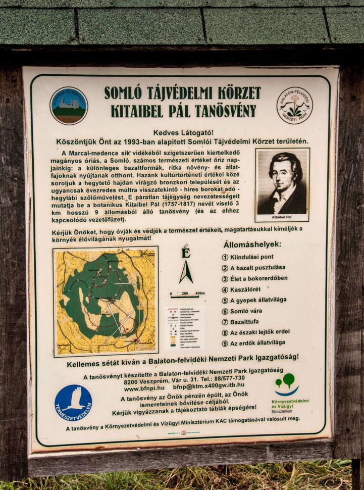 Kitaibel Pál Tanösvény információs táblája