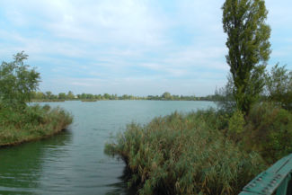 a Délegyháza környékén lévő egyik tó