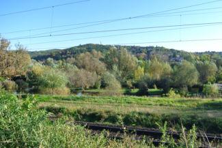 kilátás Pécel határában