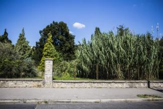 a Budai Arborétum a Villányi út felől