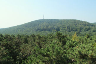 kilátás a Sörházdombi kilátóból a Károly-magaslat felé