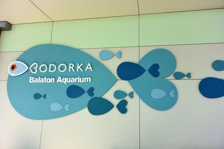 A Bodorka Látogatóközpont emblémája a falon