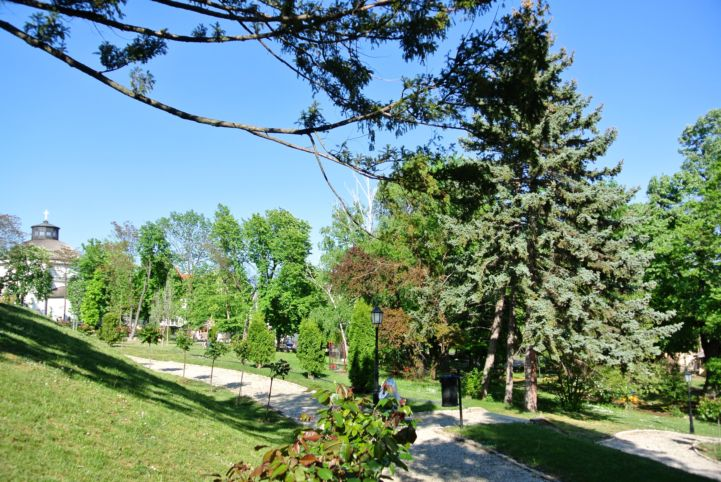garden of the Vaszary Villa with the Round Church in the back