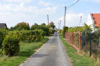 a Kőhegyi kilátó felé vezető, szőlőkkel övezett utca
