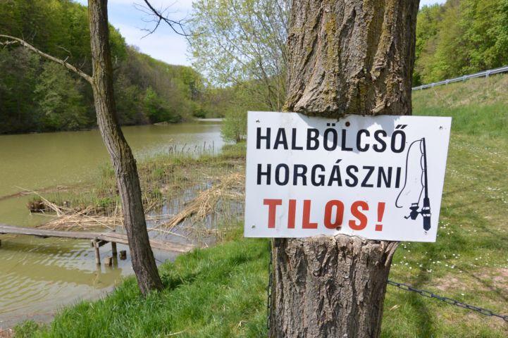 horgásztó - halbölcső felirat