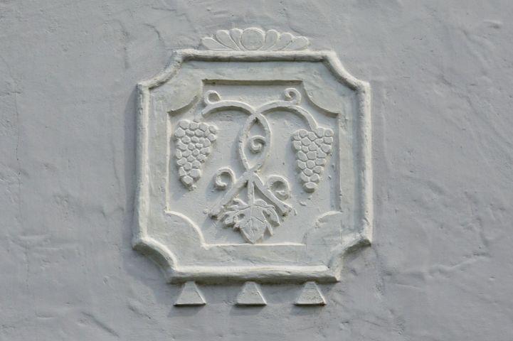 szőlő ábrázolás egy falon