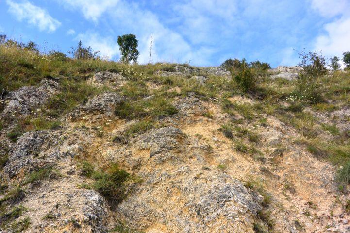 a Sas-hegy kopárabb, déli oldala