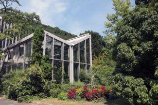 üvegház a Budai Arborétumban